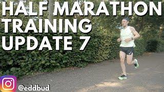 Half Marathon Training Update 7 | Zoom Fly 3 | eddbud
