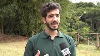 Botucatu conta com Grupo de criadores de abelhas sem ferrão