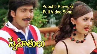 Pooche Puvvuki Full Video Song | Snehithulu | Vadde Naveen | Sakshi Shivananad | Raasi | ETV Cinema