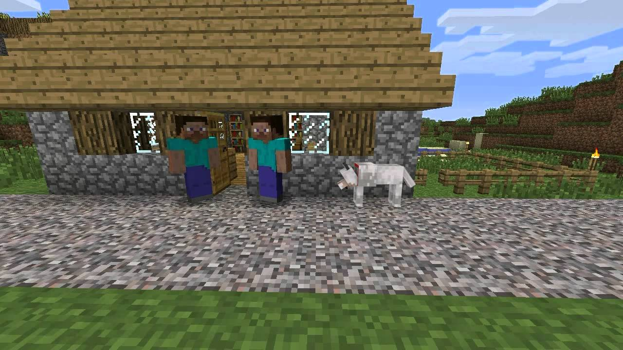 Displaying 19 gt images for minecraft dog pictures