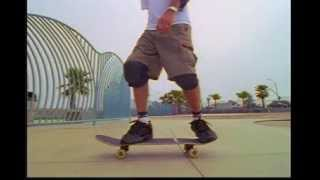 Skate Tony Hawk's Trick Tips Vol  1