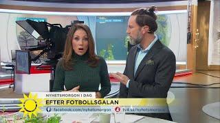 """Nyhetsmorgon i TV4 från 2017-11-21: Det visade sig att """"Steffo"""" är ..."""