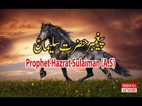 Hazrat SULAIMAN A.S Story in Urdu/Hindi