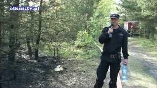 Pożar Lasu w Bukownie 11.05.2012r.