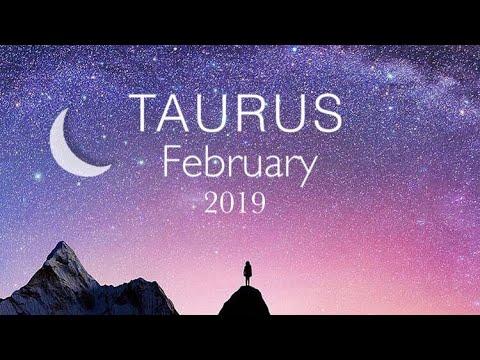 february tarot taurus