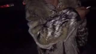 Цирк бросает животных в мороз. Улан Удэ 2016.12.23