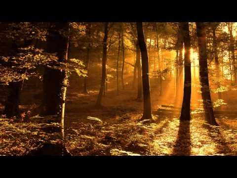 Igor Krutoy - Autumn Sonata HD