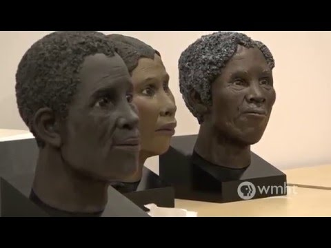 New York State Museum | The Schuyler Flatts Burial Project