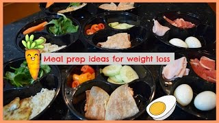 MEAL PREP IDEAS FOR WEIGHT LOSS : BREAKFAST-LUNCH-DINNER :)