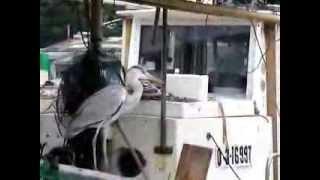 日生漁港への小さな旅
