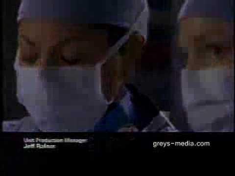 Grey's Anatomy  4.02,