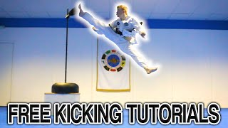 Taekwondo Kicking Tutorials Promo (Ginger Ninja Trickster) | H…