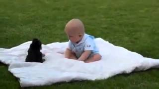 Щенок и ребенок, Маленкое чудо!!