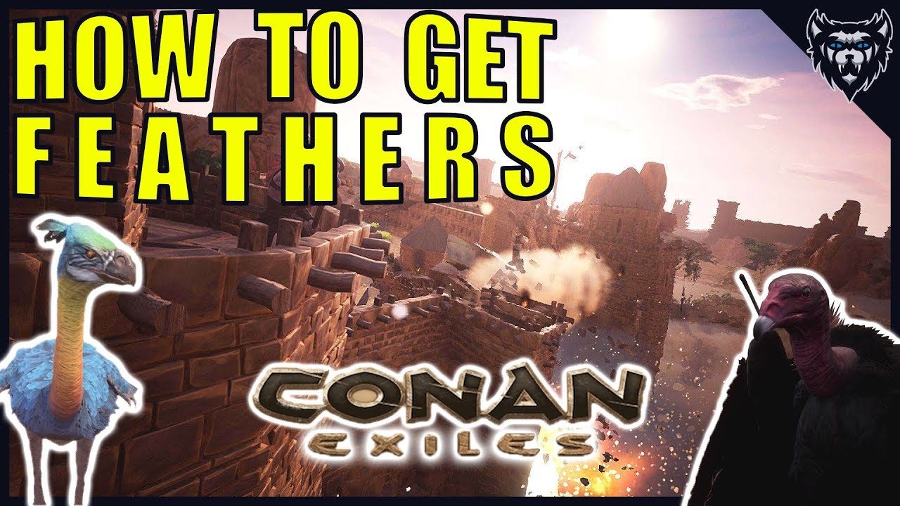 How to get Feathers in Conan Exiles - Location and Tutorial - 2018