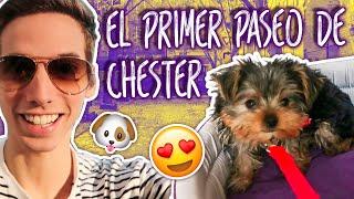 EL PRIMER PASEO DE CHESTER! (Capitulo 6)
