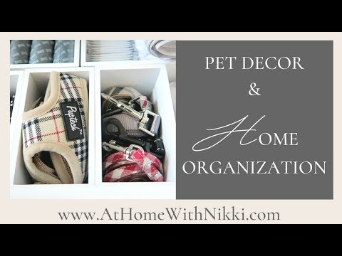 PET ORGANIZATION   HOW TO INCORPORATE PETS INTO YOUR HOME DECOR