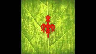 Baixar Wardruna - Runaljod - Yggdrasil   (Full Album)