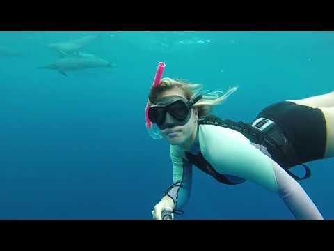 Freediving in Honaunau Bay, Kona, Hawaii