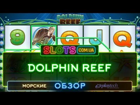 Видеообзор игрового автомата Dolphin Reef от  Playtech