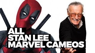 Every Stan Lee Marvel Movie Cameo In 90 Seconds