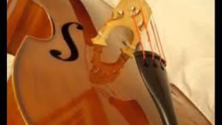 And i Love Her (instrumental violin)