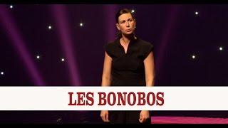 Virginie Hocq - Les Bonobos