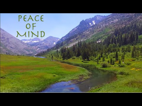 PEACE OF MIND | Backcountry Fly Fishing
