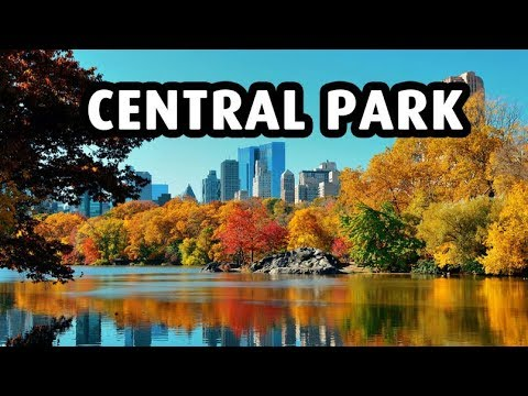 A Beautiful Stroll in Central Park, New York City