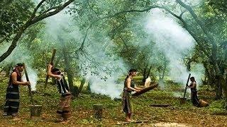 Tiếng chày trên sóc Bom Bo (Có lời) Nhạc cách mạng hay Xuân Hồng Việt Hoàn
