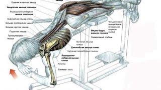 Гиперэкстензия — самое эффективное упражнение для спины и ягодиц