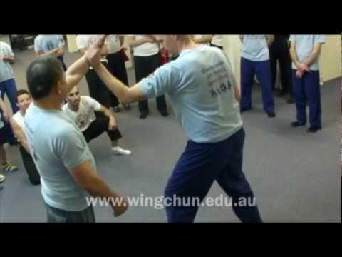 Wing Chun's Internal Force Generation