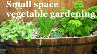 Small space vegetable gardening – A series about maximizing your space effectively
