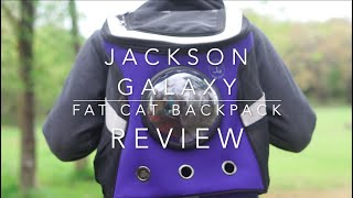 Our Honest Review of the Jackson Galaxy, Cat Backpack!