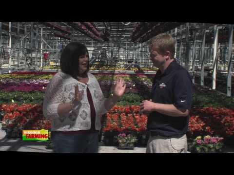 Virginia Farming: Battlefield Farms - A Large Greenhouse Serving Big Box Stores