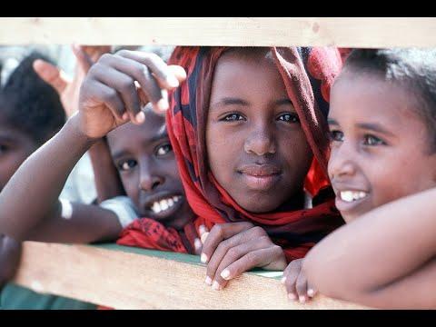 أخبار الصحة - الصومال خالية من شلل الأطفال للسنة الثالثة على التوالي  - نشر قبل 1 ساعة