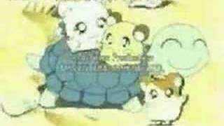 Hamtaro (Série TV)