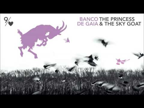 Banco de Gaia - The Princess and the Sky Goat (Ornah-Mental Mix by Dirk Schloemer) mp3