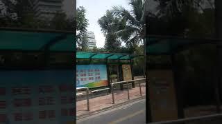 Китай Остров Хайнань Город Санья Улочки Дома деревья China Street