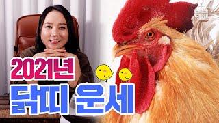 (대구점집) (사주빌딩) (운세) 2021년 닭띠 운세! [점점tv]