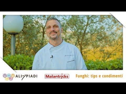 Funghi: tips e