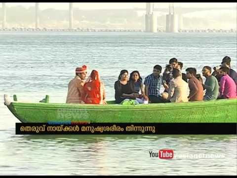Stray dogs eats dead body near ganga river at Varanasi