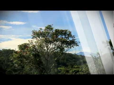 Mapawa Nature Park Teaser