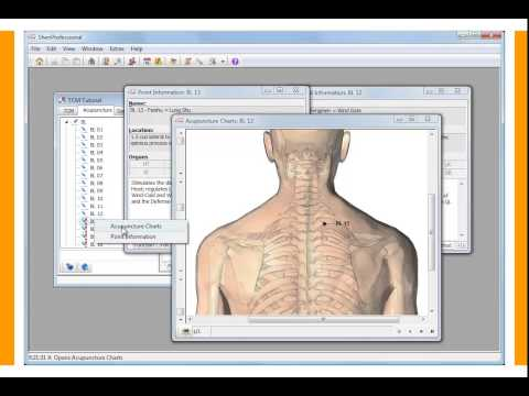 ShenProfessional   Software for Acupuncture, TCM   Practice Management 4
