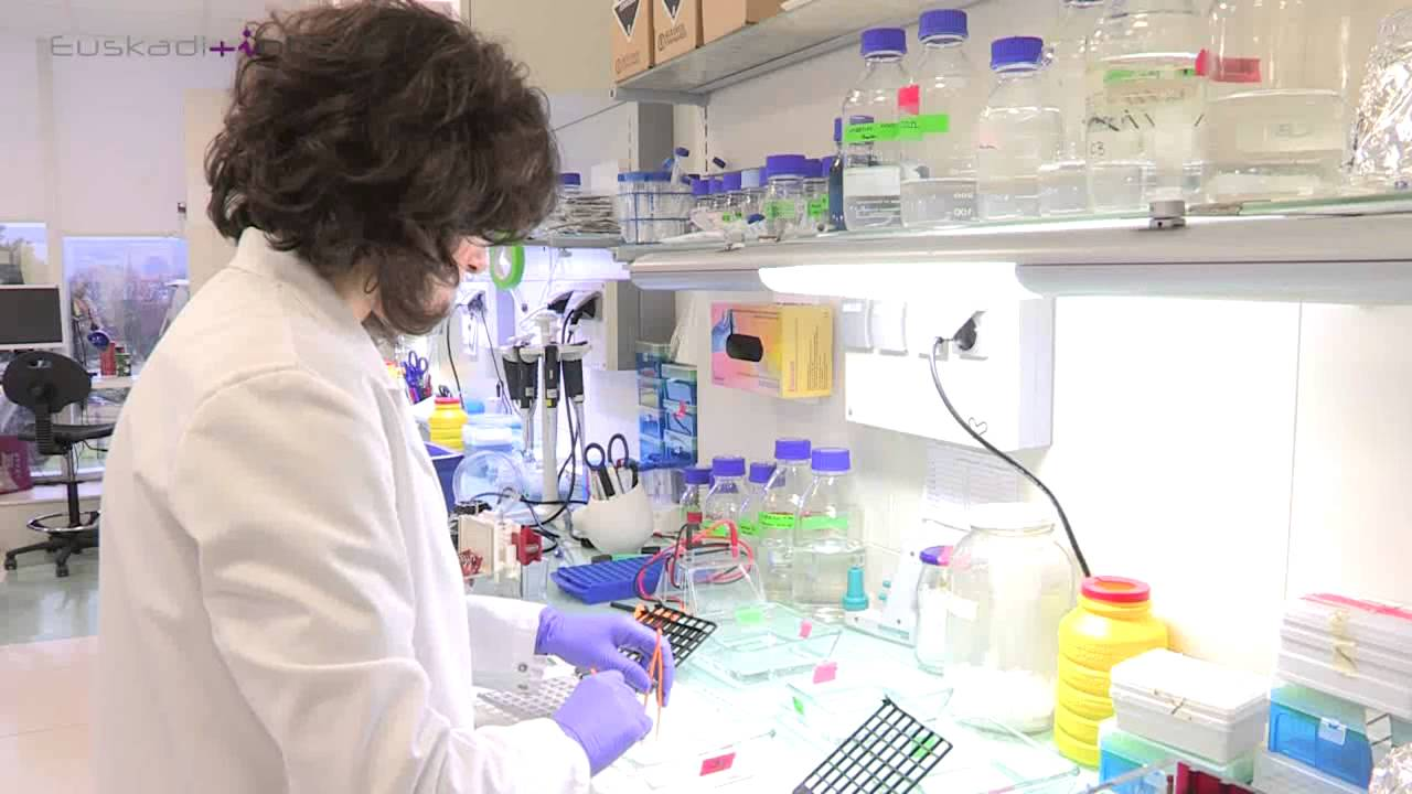 Laboratorio de biologia molecular