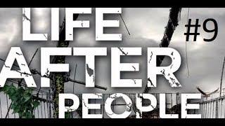 Что,если люди исчезнут?Будущее планеты:жизнь после людей.фильм 9й
