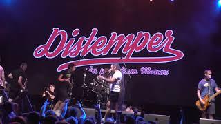 Тайна. Distemper. Главсlub green concert 21 сентября 2018.