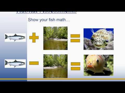 NFIP ESA Puget Sound Biological Opinion and Habitat Assessments (FEMA Region 10)