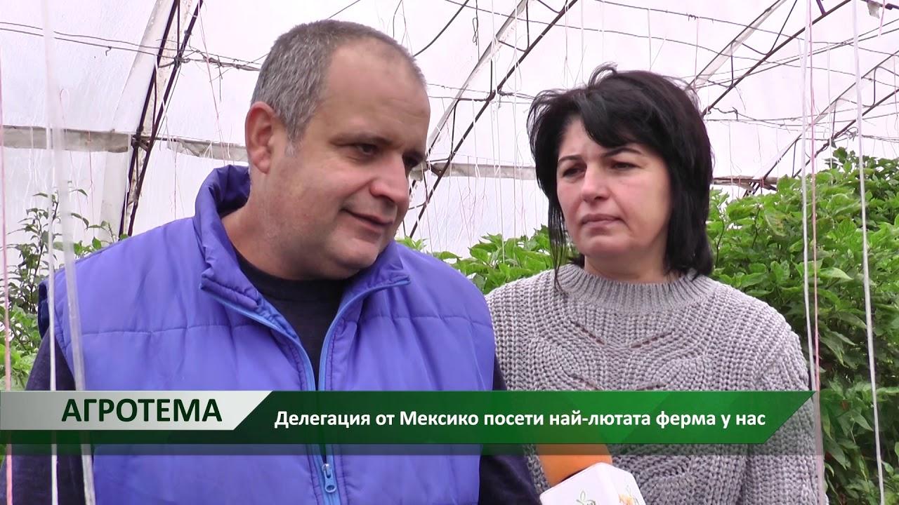 Агротема: Делегация от Мексико посети най-лютата ферма у нас, автор: Галина Недкова - YouTube