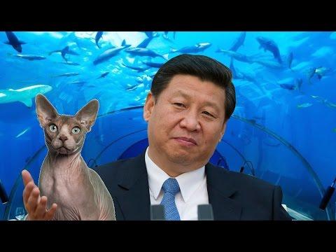 "China's ""Secret"" Sea Lab, 10,000 ft. Underwater"