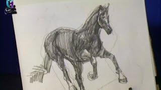 Уроки рисования (№ 35) карандашом. Рисуем лошадь